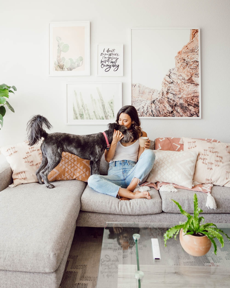 Behind the Design: A Cozy Boho Living Room Makeover