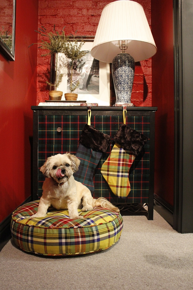 Tartan Plaid Dog Bed and Plaid Stockings