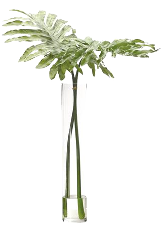 Faux Selloum Leaves Arrangement Green Decorist Tropical flower arrangements ikebana flower arrangement tropical flowers tropical leaves arte floral deco floral flower. faux selloum leaves arrangement green