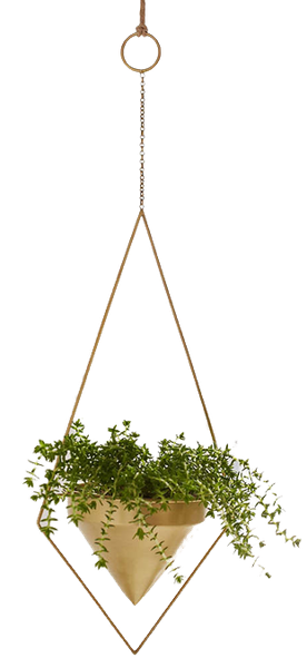 Assembly Home Theia Hanging Planter | Decorist